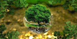 ¿Qué son los Seguros de Responsabilidad Civil Medioambiental?